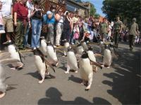 El zoológico de Edimburgo